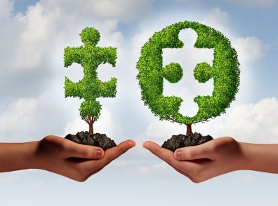 Reconciliation main terre arbre emboitement unité